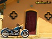 Sfondo: Harley Davidson