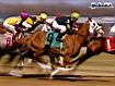 Sfondo: Horse Racing