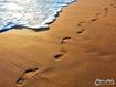 Sfondo: Orme nella sabbia