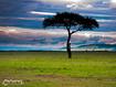 Sfondo: Kenya