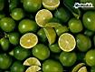 Sfondo: Limes