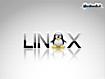 Sfondo: Linux