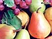 Sfondo: Mix di frutta