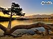 Sfondo: Mountain Lake