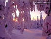 Sfondo: Neve al tramonto