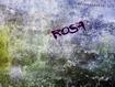 Sfondo: Rosa