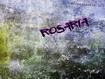 Sfondo: Rosaria