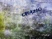 Orazio