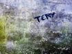 Sfondo: Tery