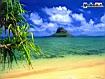 Sfondo: Oahu