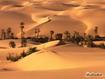 Sfondo: Oasi nel deserto