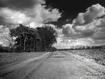 Sfondo: Old Road