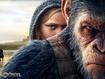 Pianeta scimmie