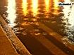 Sfondo: Pioggia in strada