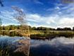 Sfondo: River Reflex