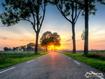 Sfondo: Road At Sunset