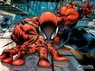 Sfondo: Spiderman Climbs