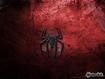 Spider… man