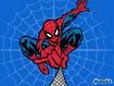 Sfondo: Spiderman Web