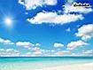 Sfondo: Sunny Day