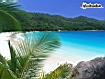 Sfondo: Riva tropicale