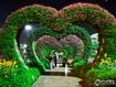 Sfondo: Tunnel Of Love