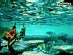 Sfondo: Underwater