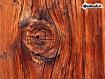 WoodBark