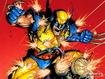 Wolverine Fight
