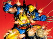 Sfondo: Wolverine Fight
